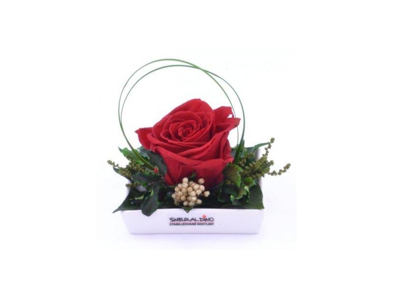 Dekorace stabilizovaná růže Barva: Red