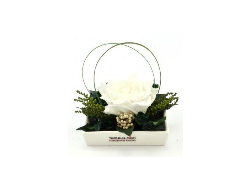 Dekorace stabilizovaná růže Barva: White