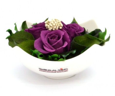 stabilizovaná růže Barva: Purple