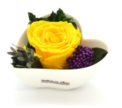 Stabilizovaná růže Barva: Yellow