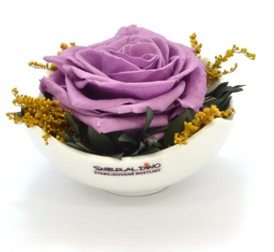 Stabilizovaná růže Barva: Lilac