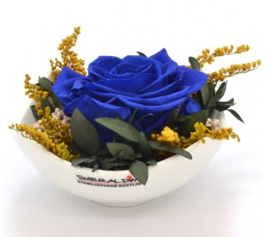 Stabilizovaná růže Barva: Royale blue