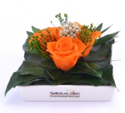 Dekorace stabilizovaná růže Barva: Orange