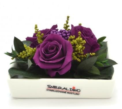 Dekorace stabilizovaná růže Barva: Purple