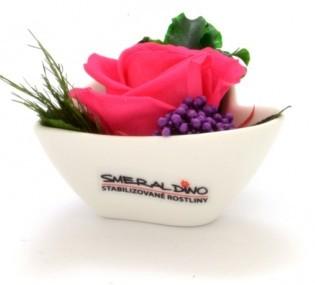 Dekorace stabilizovaná růže Barva: Dark pink