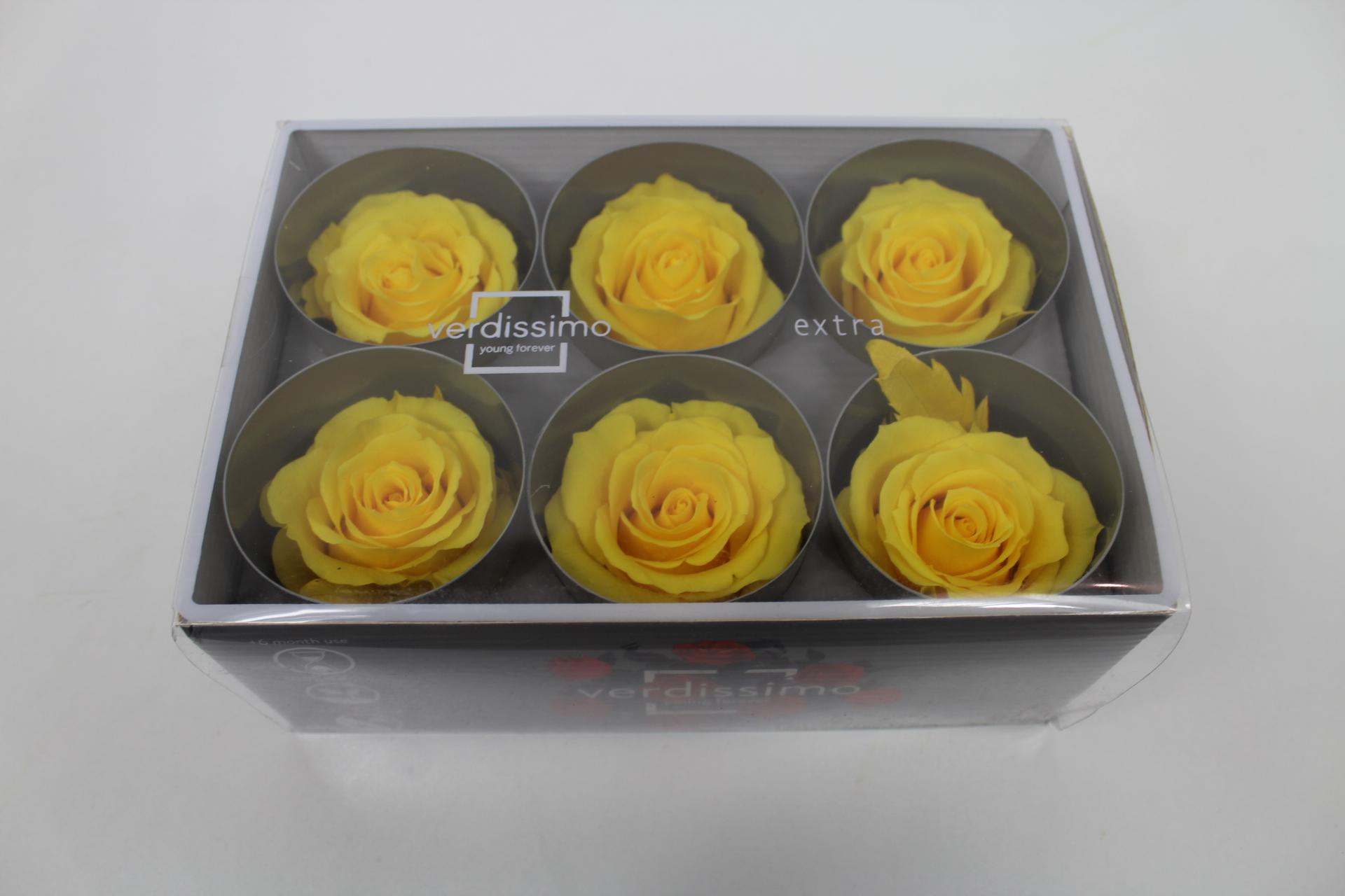 Stabilizovaná růže - hlavička Barva: Yellow