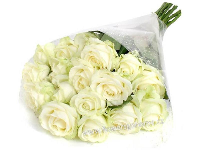 Bílé růže Velikost: 7 - 29 ks (cena za 1 ks)
