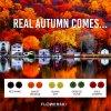 real autumn barevne nausnice flowerski