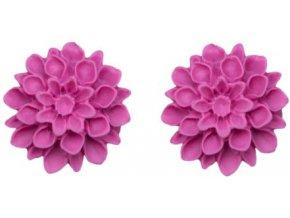 fuchsia nausnice flowerski
