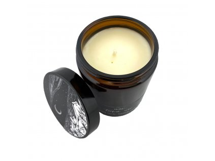 Svíčkuj Ručně vyráběná svíčka Tichá noc 180 ml