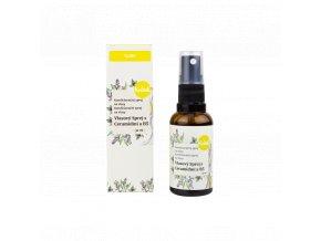 Vlasový sprej s ceramidmi a B5 30 ml