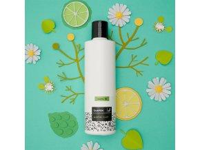 Caltha Tekutý šampon na mastné vlasy lípa a heřmánek 250 ml