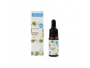 Kvitok Pleťové sérum Rostlinný kolagen 10 ml