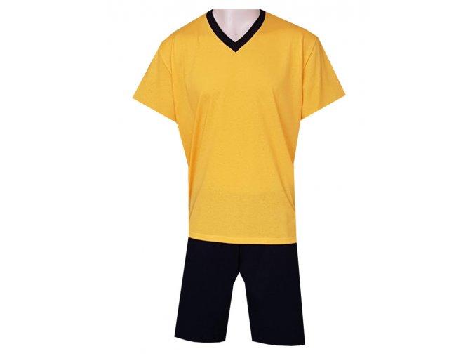 Pánské Pyžamo Krátké FOLTÝN PK 256