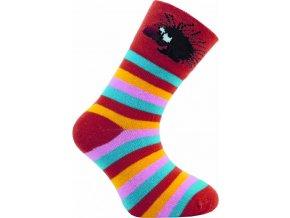 Dětské ponožky Novia 48N 5 párů v balení mix vzorů ježek 1