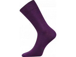 Společenské Ponožky Lonka Decolor fialová