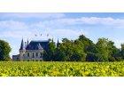 Bordeaux AOC & Cru Burgeois