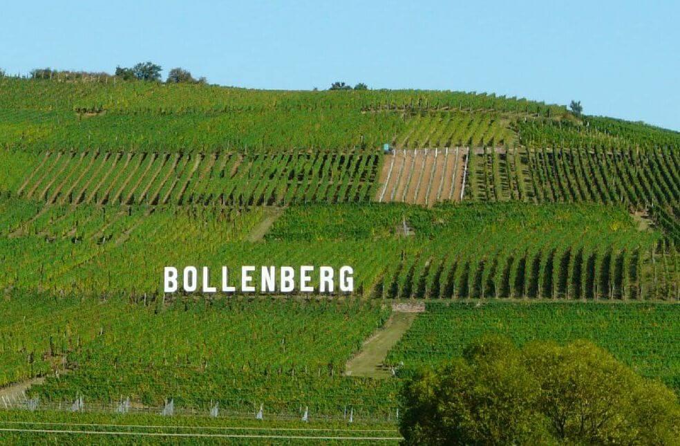 Bollenberg2