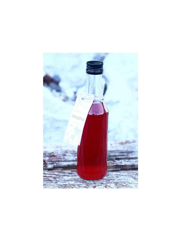 108 1 low carb sirup malinovy(1)
