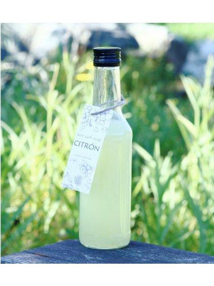 156 low carb sirup citron(1)