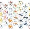 62336 2 di023u wildlife memo 4