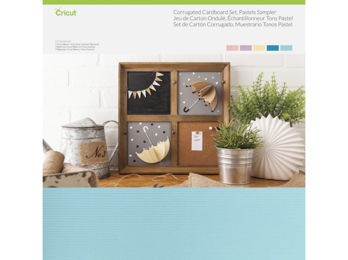 169595 Corregated Cardboard Pastels 009
