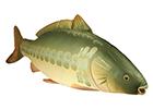 Plyšové ryby