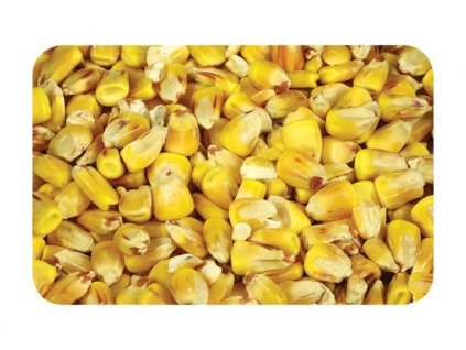 Kukuřice  + Sleva 10% za registraci