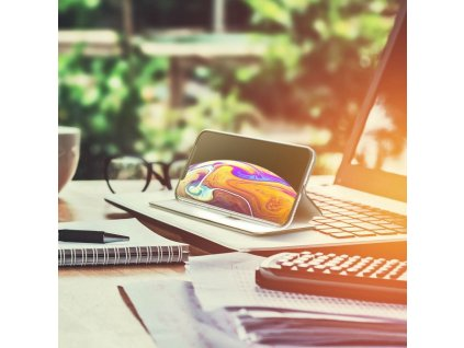 Pouzdro Forcell Book Elegance SAMSUNG Galaxy A42 5G černé