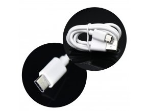 Forcell univerzální síťová nabíječka microUSB typ C s odnímatelným 2A kabelem