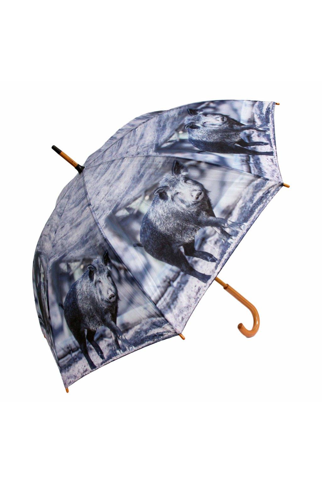 Deštník - divočák