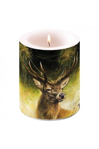 Svíčka  - Lesní zvířata (jelen, divoká prasata)