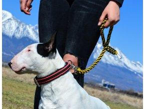 Cvičné vodítko pre psa Snake čierno žlté3011 5150842106431930368 n – kópia