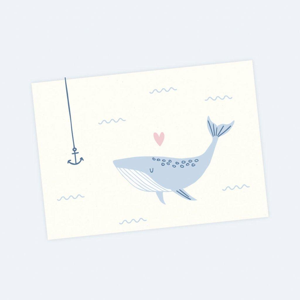 pohled velryba