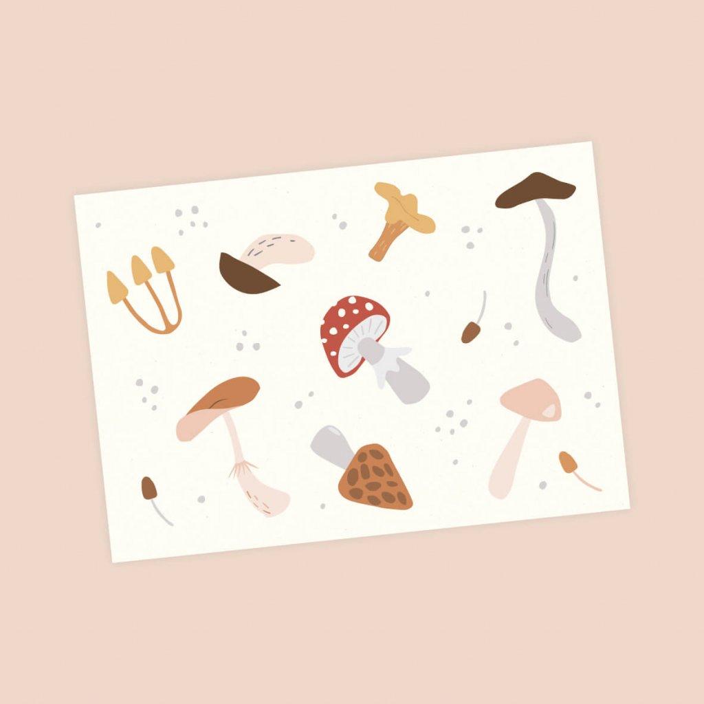 pohlednice houby