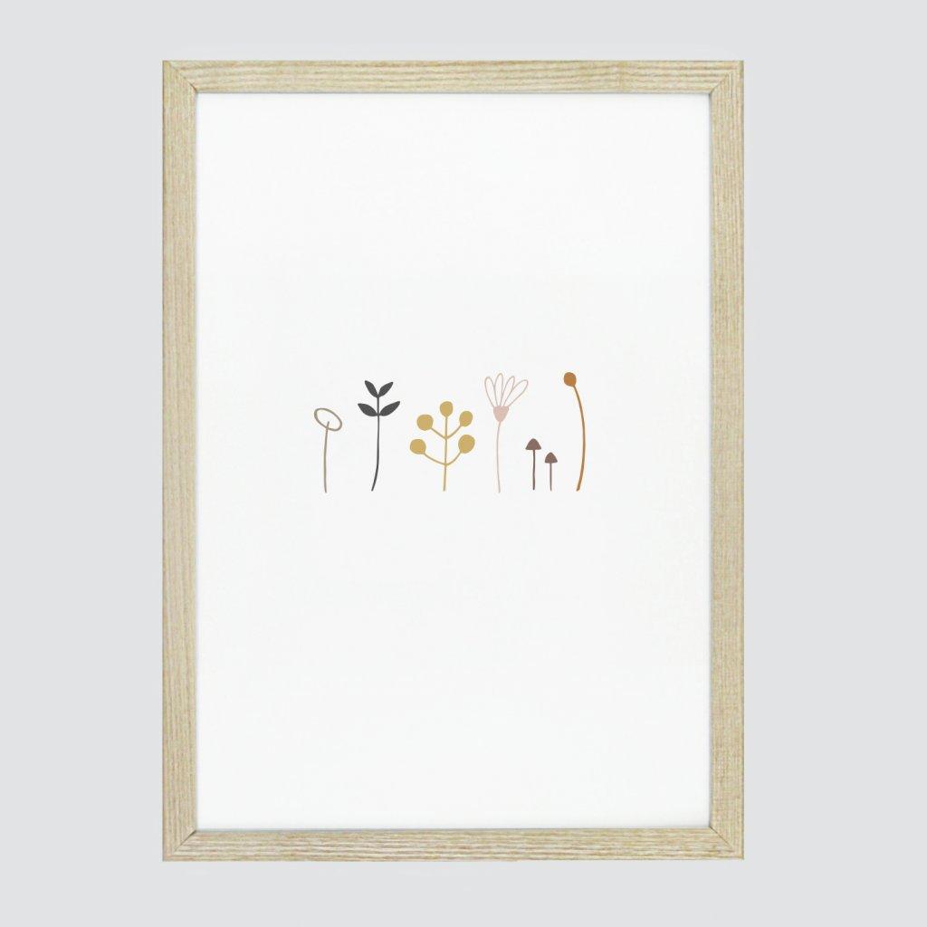 kytičky a houbičky (1)