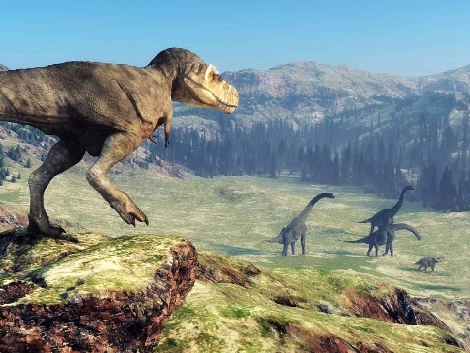Popis a rozdělení dinosaurů