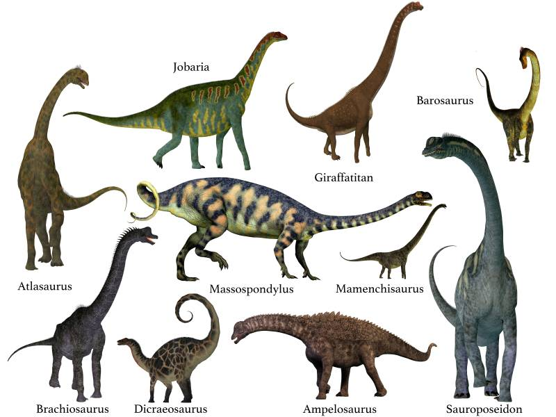 Seznam dinosaurů