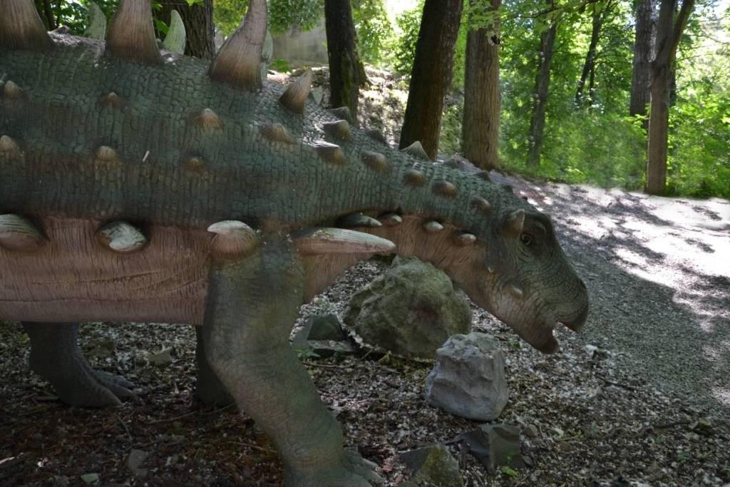 dinosaurus-polacanthus