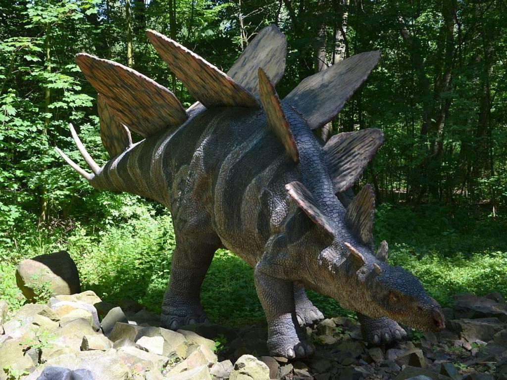 stegosaurus dinopark