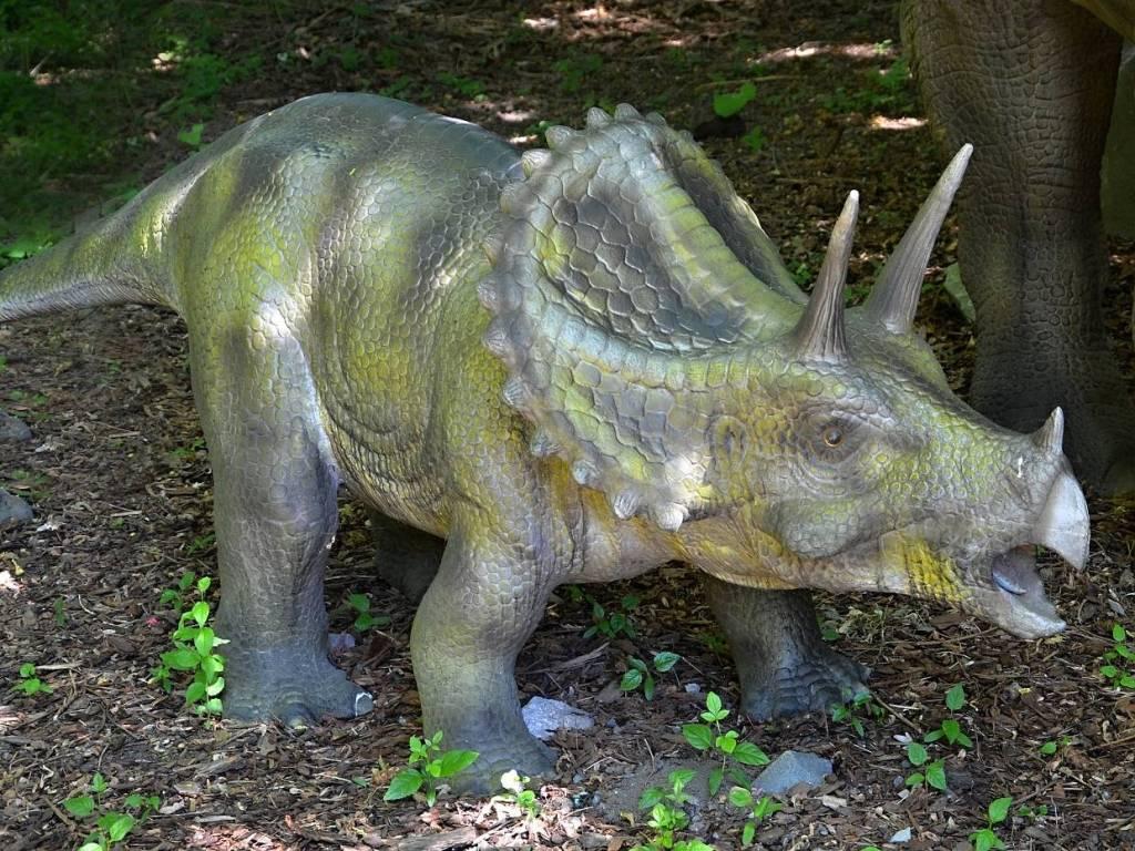 Dinopark Vyškov - dinosauři