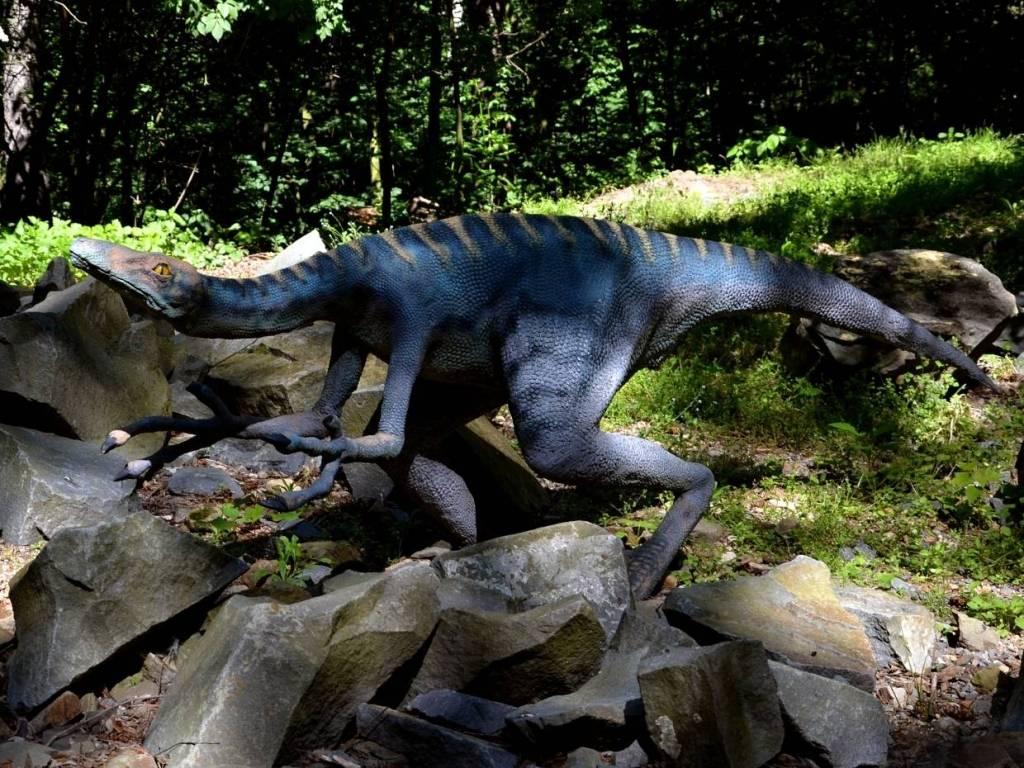 troodon v dinoparku
