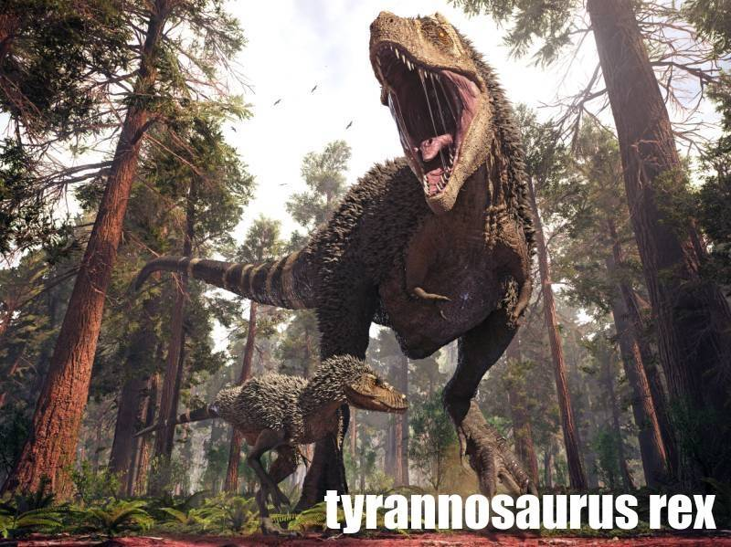 tyrannosaurus-atlas-dinosauru