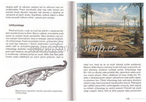 Abeceda dávných věků - Bořivoj Záruba - ukázka z knihy