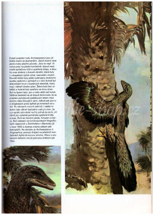 Kniha o pravěku - Archaeopteryx