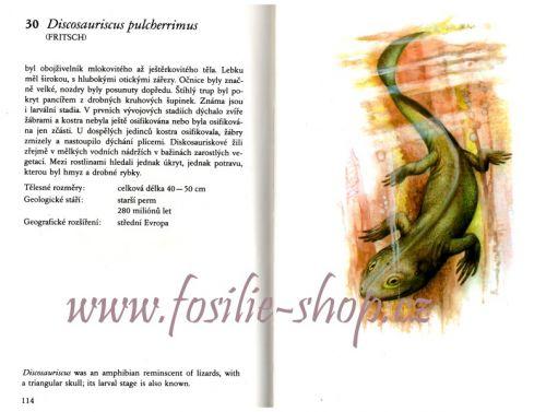 praveka-zvirata-josef-benes-zdenek-berger-kniha