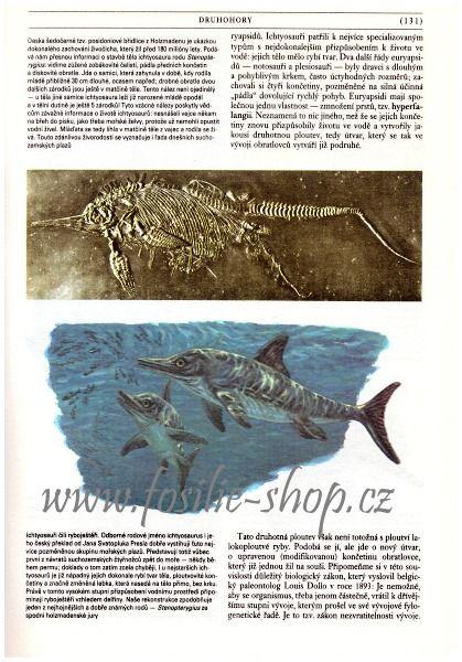 zkamenela-minulost-oldrich-fejfar-ichtyosaurus