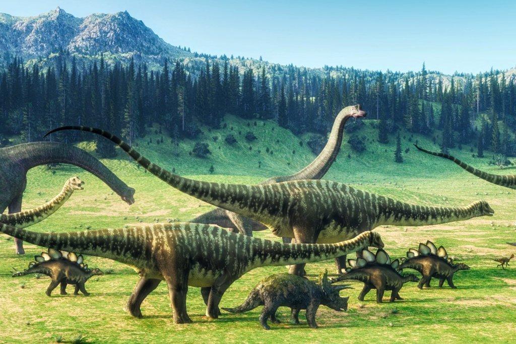 dinosauri-kost-1ks