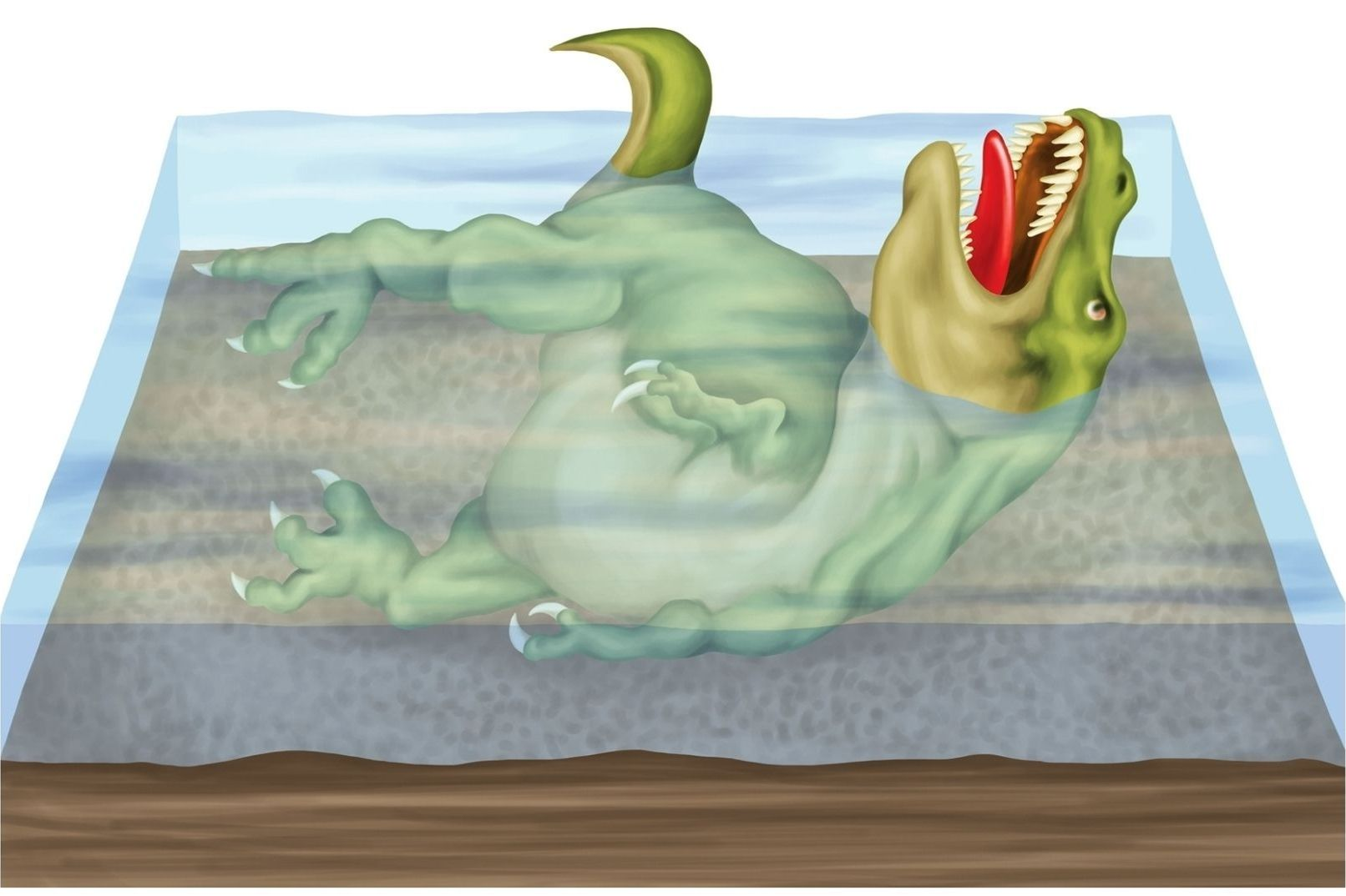 jak-vznikaji-fosilie
