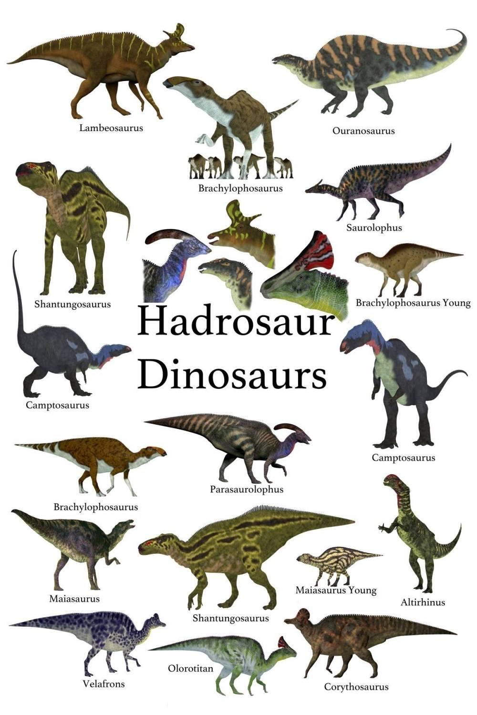 Hadrosauridae-seznam-dinosauru